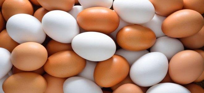 البيض الكثير
