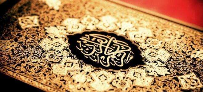 سور القرآن الكريم في المنام