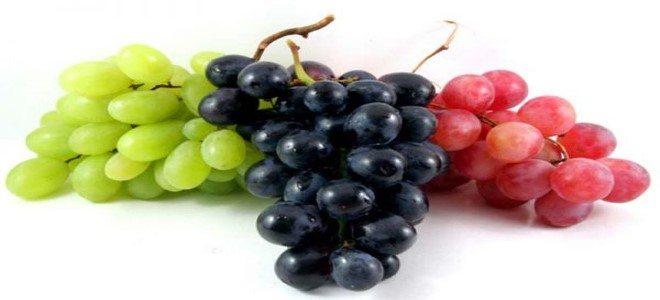 العنب في المنام