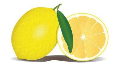 Photo of طريقة تخليل الليمون المعصفر المسلوق السريع