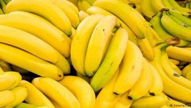 Photo of اكل الموز في المنام للعزباء دلالات رؤية الفواكه لابن سيرين