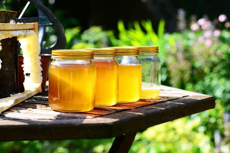 فوائد العسل للجروح والحروق