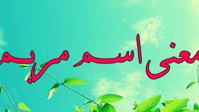 معنى اسم مريم في الإسلام